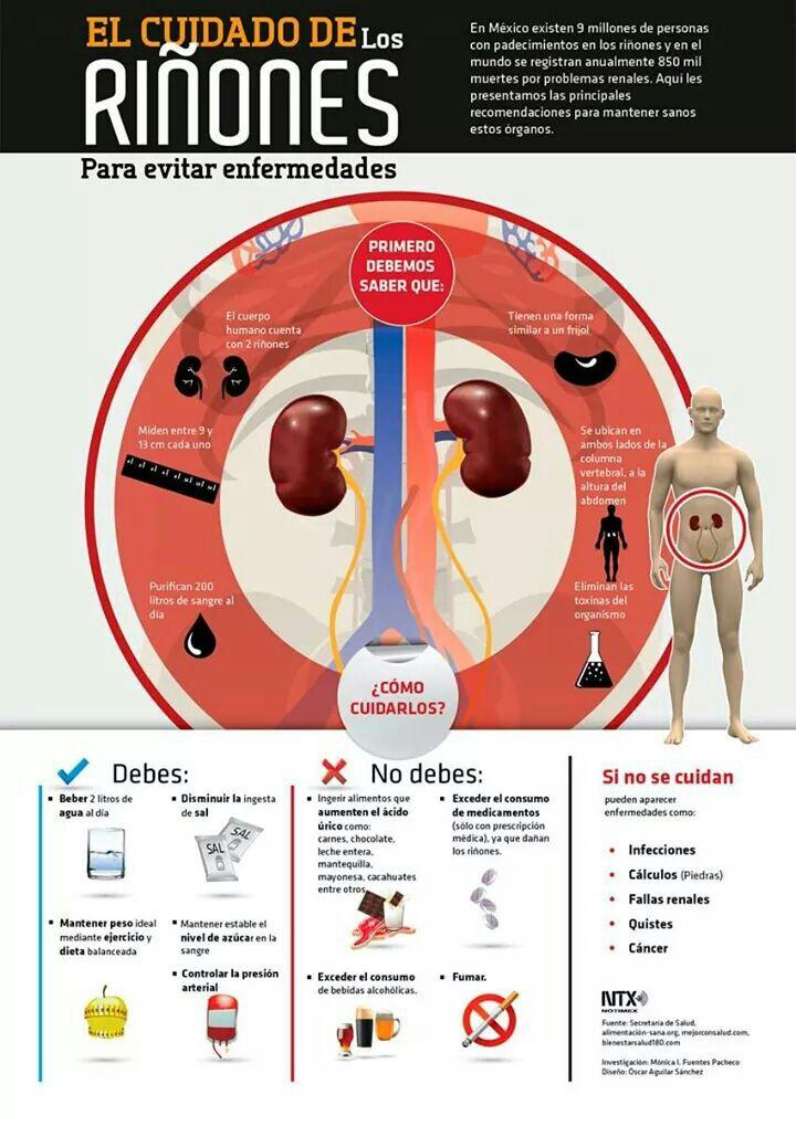 [Infografía] El cuidado de los riñones para evitar enfermedades